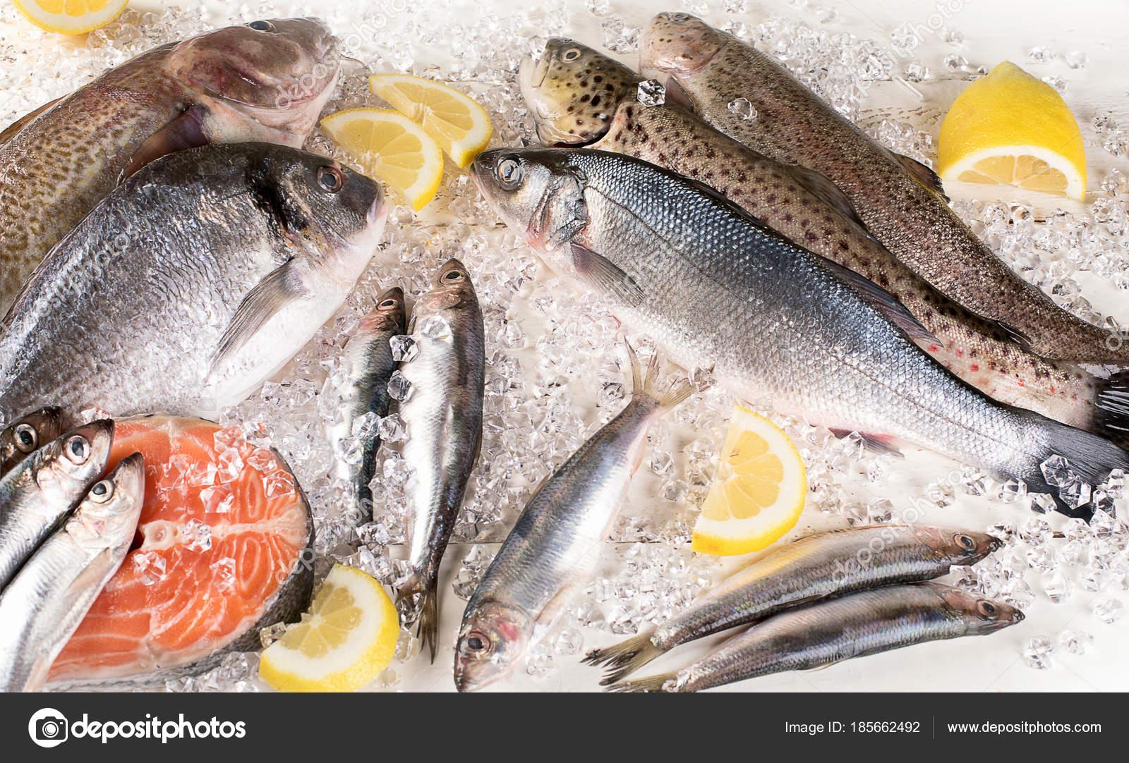 348713153a0a60 Свіжа риба, морепродукти і лимона скибочками на льоду. Здорове харчування.  Вид зверху — Фото від bit245
