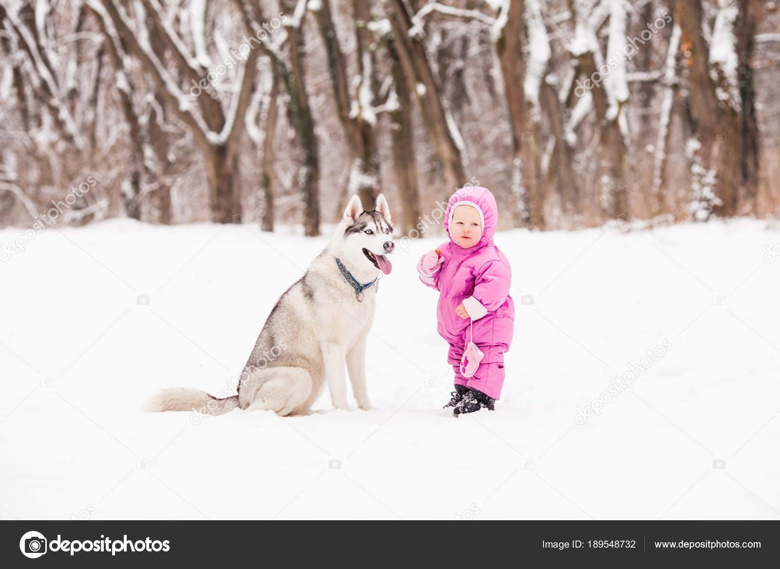 Little Baby With Husky Dog Stock Photo C Oksixx 189548732