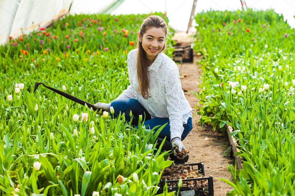 Gardener woman planting tulips