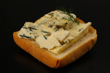 Tasty Sandwich with blue cheese