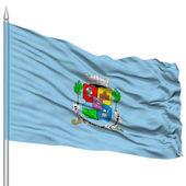 Fotografie Sofia City Flag on Flagpole
