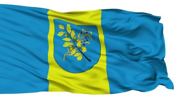 Izolované Dziarzynsk městská vlajka, Bělorusko