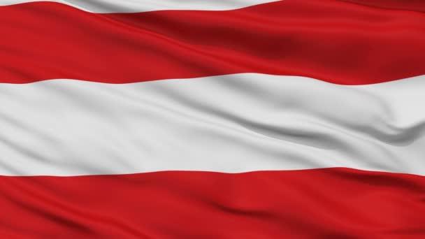 Vértes Brno város zászló, Cseh Köztársaság