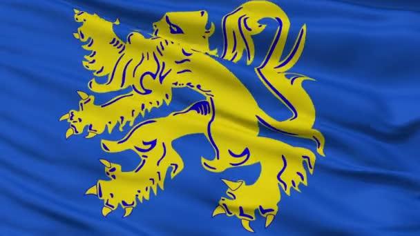 Detailní Zottegem městská vlajka, Belgie