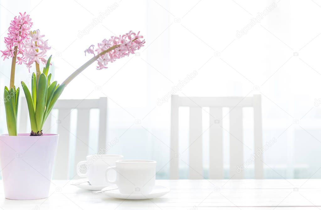 Cups of coffee with hyacinth flowers on the white table