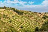 Fotografia Camminata costa in Italia