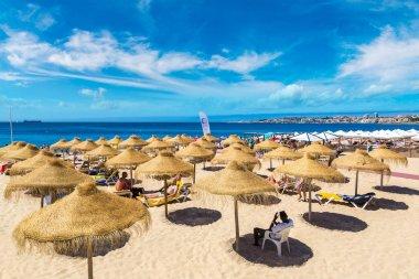 Umbrellas on public beach