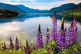 Fényképek Norvégia gyönyörű természet.