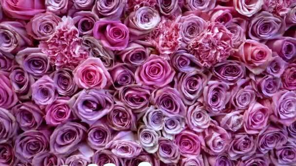 Natural roses background closeup