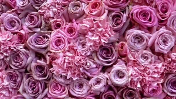 Természetes rózsák háttér közelkép
