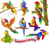 Illustration of a set of bright emotional cartoon parrots