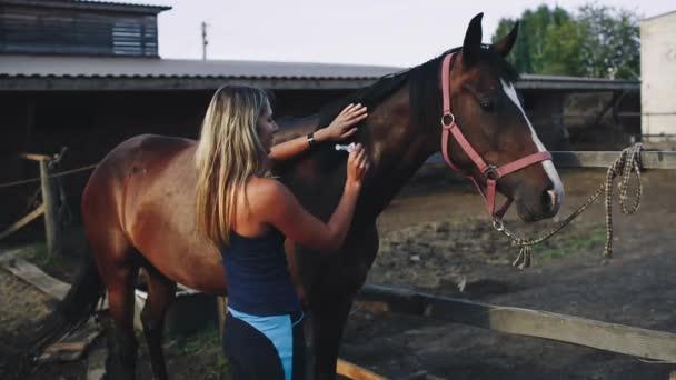 A nők beoltott a Farm a lovak