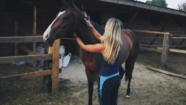 Žena čistit koně na farmě