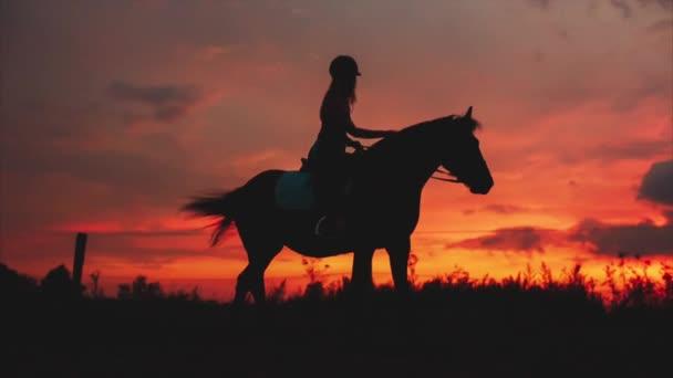 Silueta jezdce a koně při západu slunce