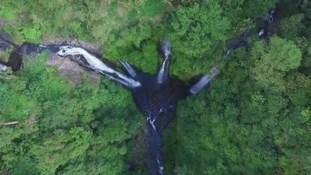 Aerial view of Waterfall in green rainforest