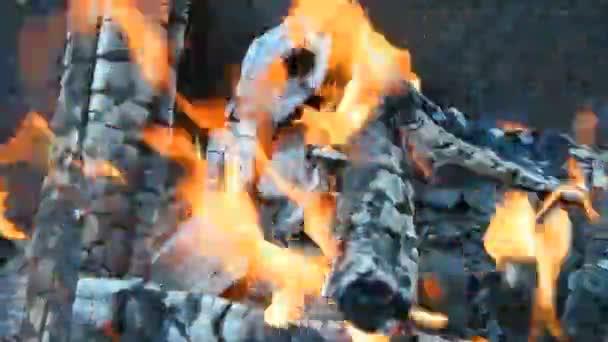 Palivové dříví pro spalování uhlí na grilu, detail
