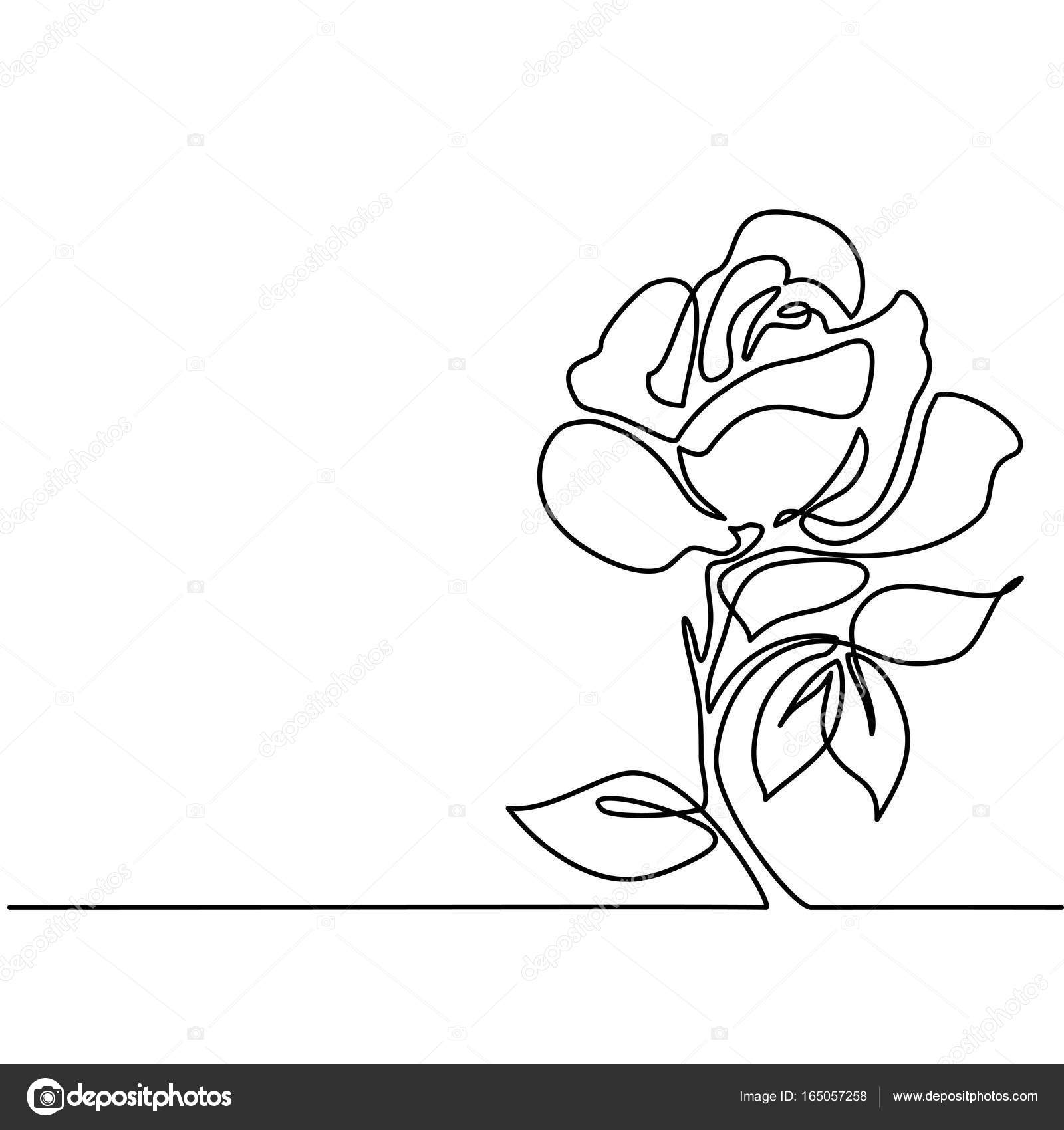 Drawing Of Beautiful Flower Stock Vector Valenty 165057258