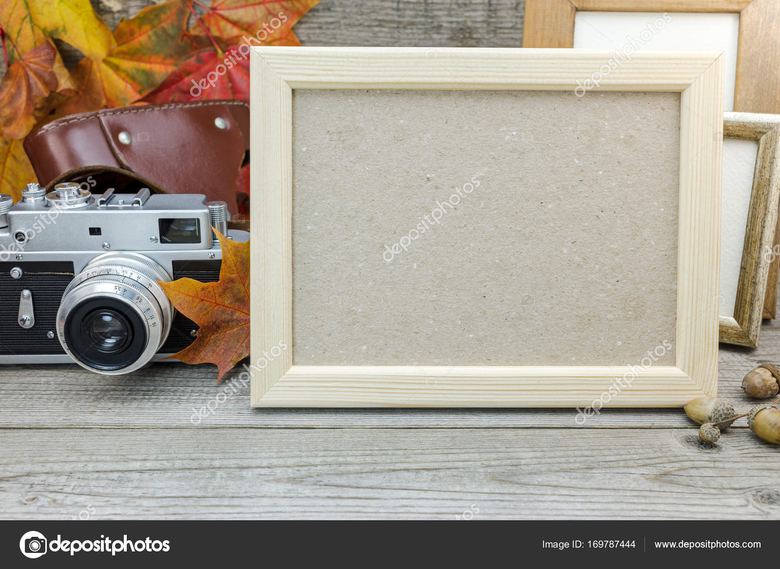 marcos de vacíos, cámara clásica, amarillo hojas secas — Foto de ...