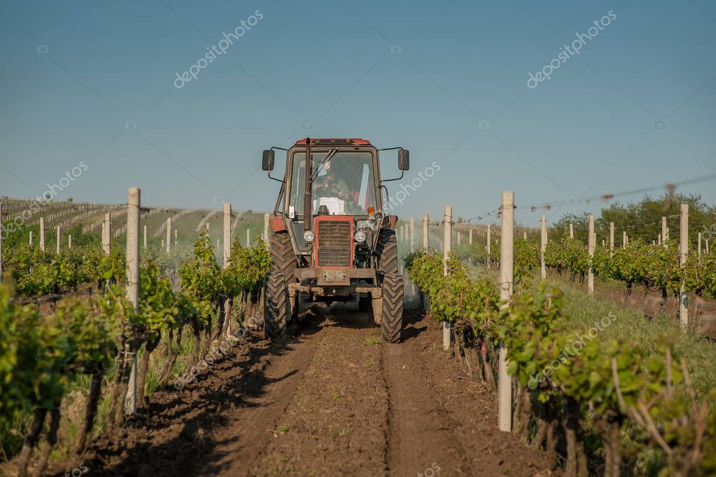 Working machines on the grape field
