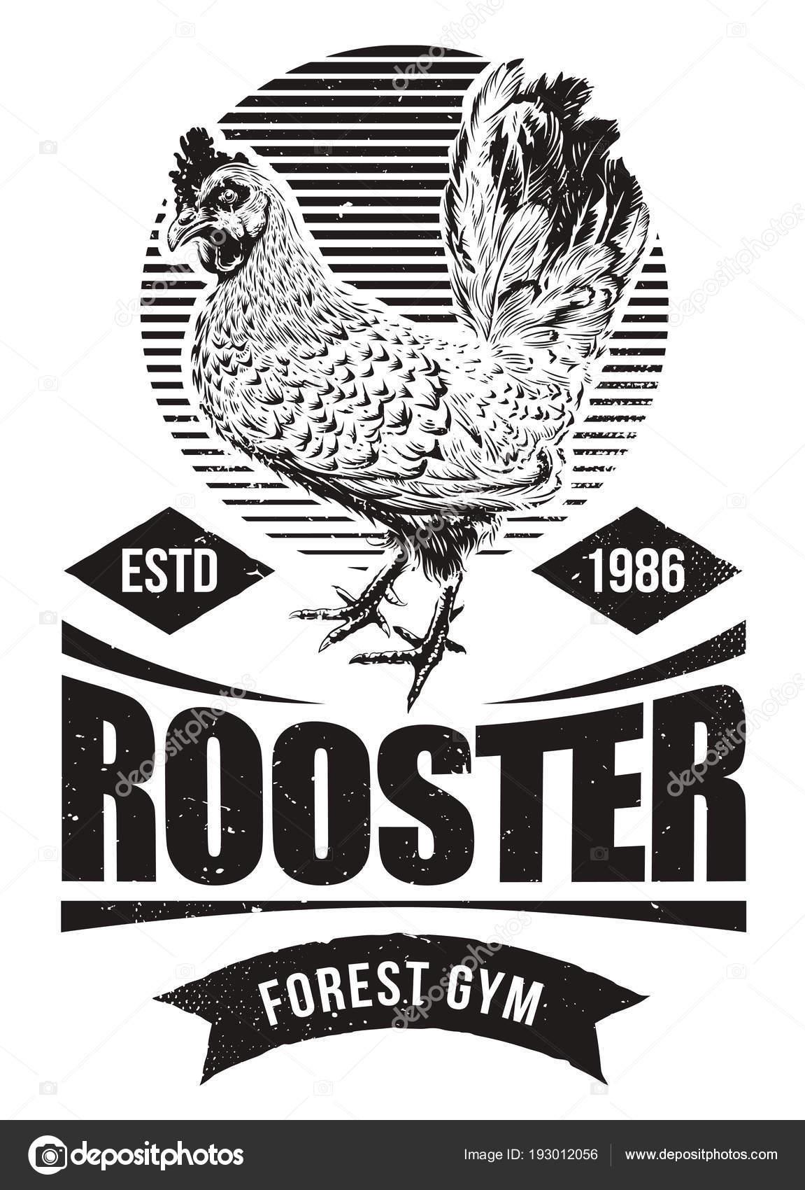 Pelea de gallo de diseño — Vector de stock © Vecster #193012056