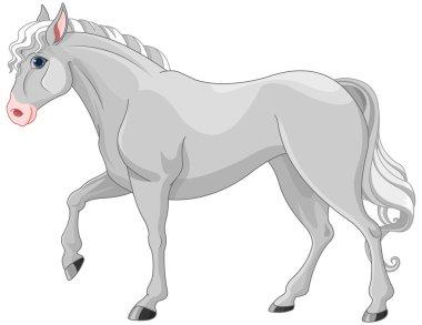Beautiful Grey Horse
