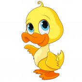 Photo cartoon duck baby