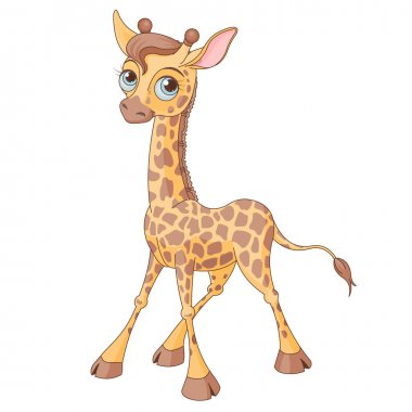 little cute giraffe calf