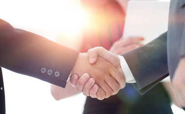 Successful business people handshaking after good deal. stock vector