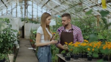 Young cheerful man florist talking to customer and giving advice while working in garden center