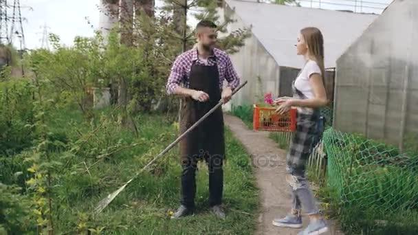 Atractiva pareja trabaja cerca de efecto invernadero. Jardinero de ...