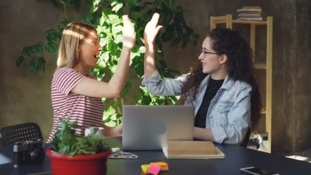 Businesswomen are working at project together using laptop, then doing high five to celebrate success. They are talking, watching screen and pointing at it happily.
