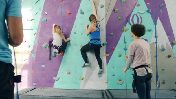 Group of people climbing up artificial wall and belaying from the ground indoors