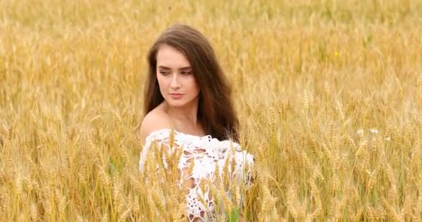 Young beautiful girl posing against a wheat field background