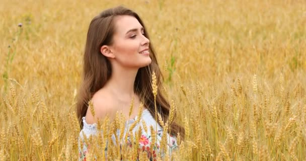 Krásná mladá dívka pózuje na pozadí pole pšenice