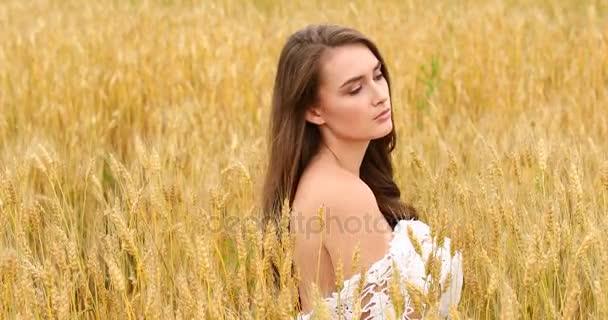 Fiatal gyönyörű lány pózol a búza mező háttér