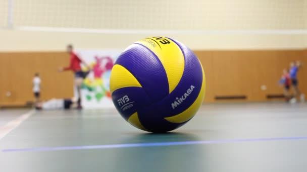 Mikasa míč, oficiální dvoubarevné oficiální míč volejbalová federace