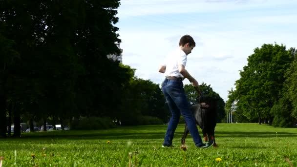 Junge spielt mit großem Hund im Park