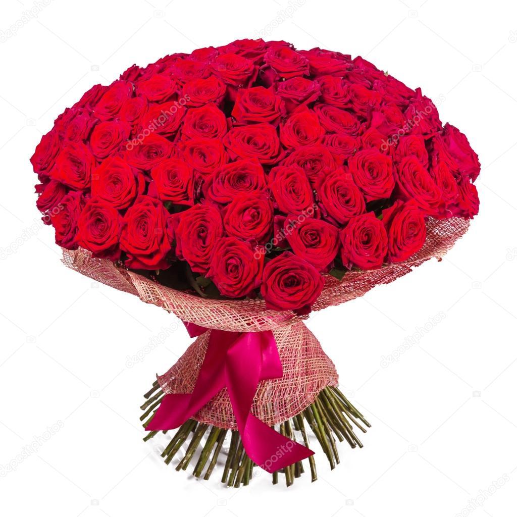 manojo de grandes rosas rojas aisladas sobre fondo blanco foto de stock - Fotos De Rosas Rojas Grandes