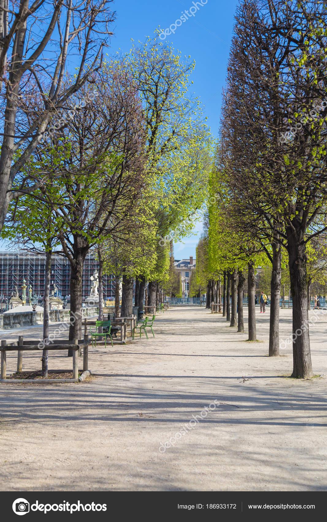 Jardin des Tuileries - The Tuileries Garten Park in Paris ...