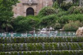 Photo Fountain at Parc de la Ciutadella. Citadel park, Barcelona