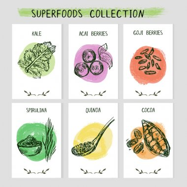 Set of 6 card templates with hand drawn superfoods.
