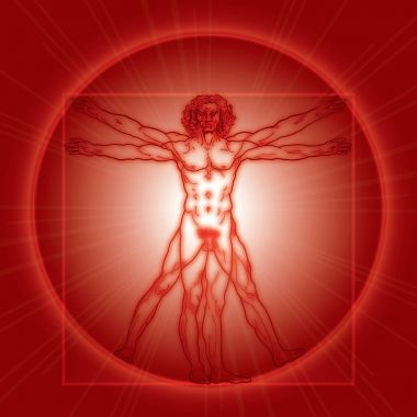 The Vitruvian man (Homo vitruviano). Red version.