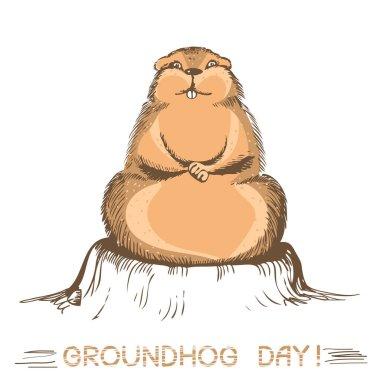 groundhog day marmot.Vector handdraw illustration on white