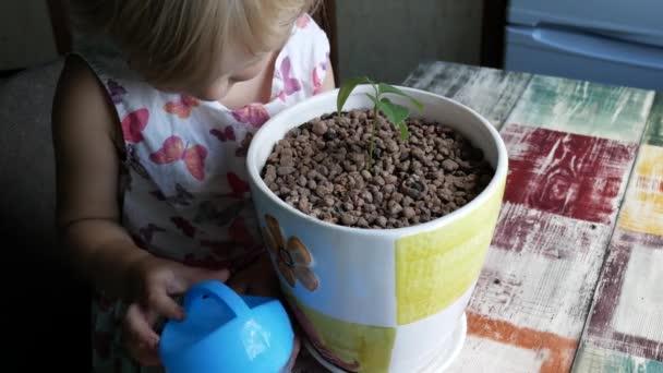 Dítě nalévá své rostliny od konev.