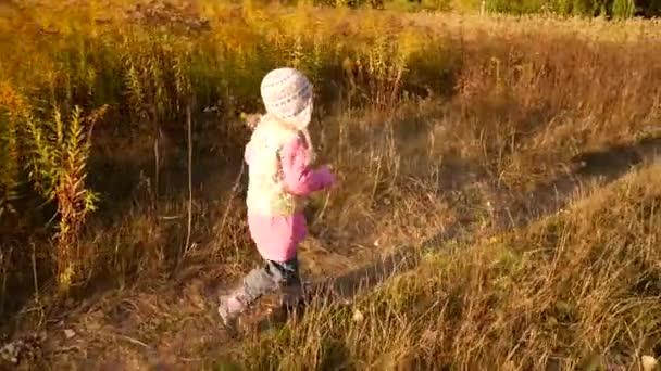 Ein kleines Mädchen läuft durch das herbstliche Feld. Licht vom Sonnenuntergang. Zeitlupenvideo.