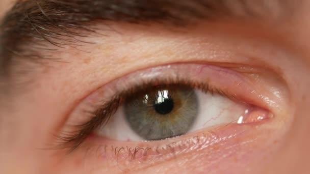 Oko člověka. Velký snímek mans oči a husté obočí.