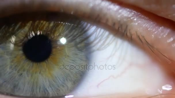 Male eye macro video. The pupil close-up moves in the eye.