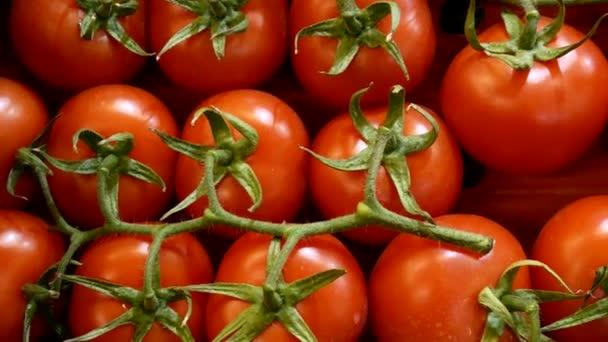 Červená rajčata na počítadle supermarketu.