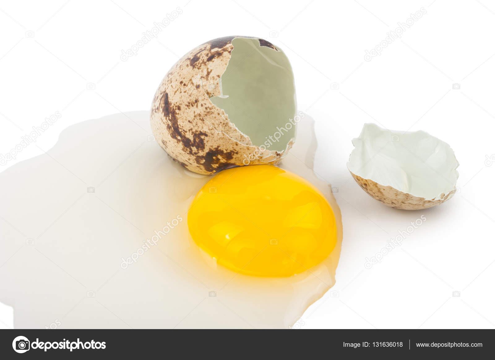 eieren eiwit