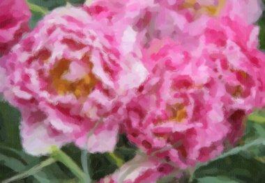 """Картина, постер, плакат, фотообои """"на весеннем поле цветут красивые голландские цветы. """", артикул 341911228"""